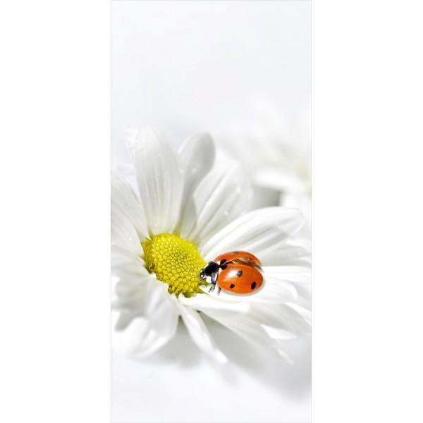 çiçek 002