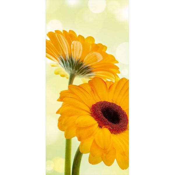 çiçek 008