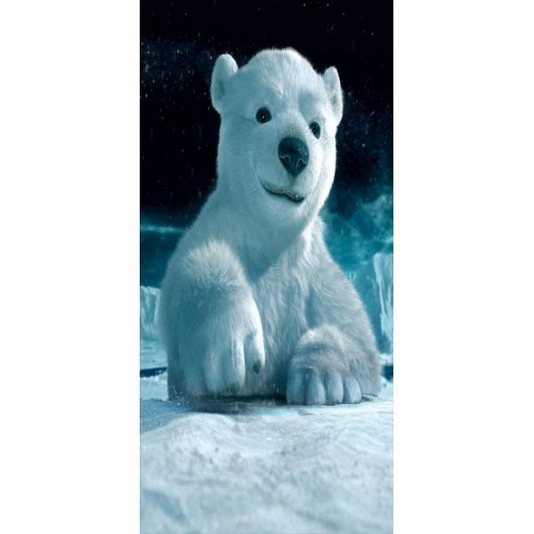 Genel kutup ayısı 029